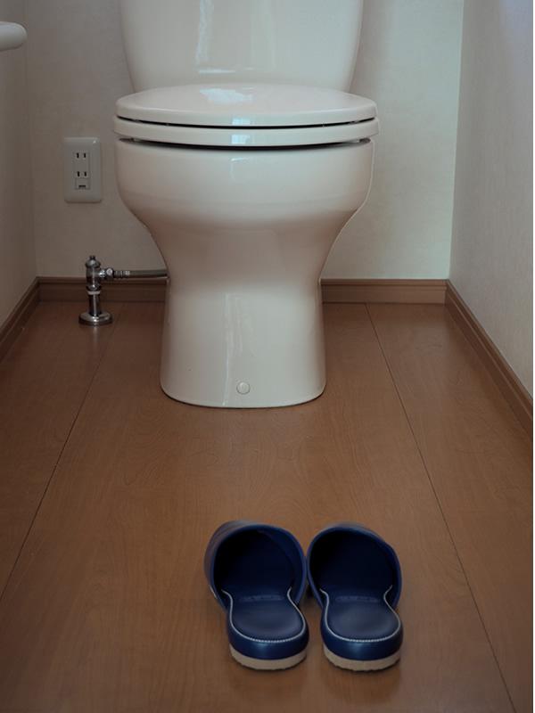 Toilet (room) slippers